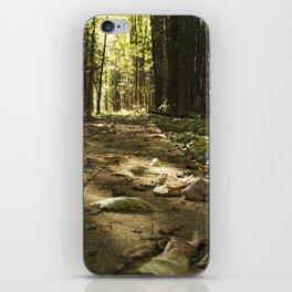 Deep Forest Board Walk iPhone Skin