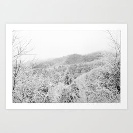 Carolina Winter Art Print