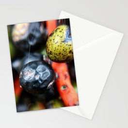 Colorful berries Stationery Cards
