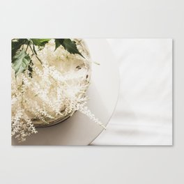 White Naked Cake Canvas Print