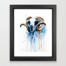 Sheep Framed Art Print