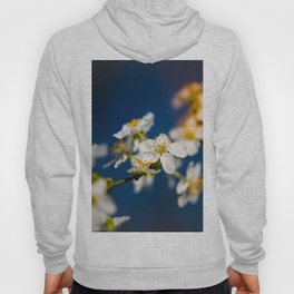 Beautiful White Jasmine Flowers With Green Leaves Against A Blue Background Hoody