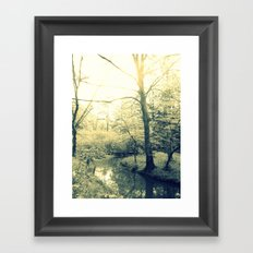 Boggy Sun Framed Art Print