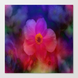 Rainbow Anemone Canvas Print