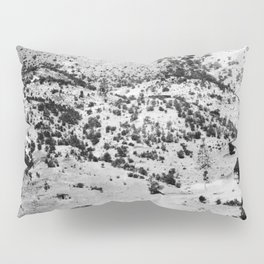 Santa Cruz County, Arizona. 1909 Pillow Sham