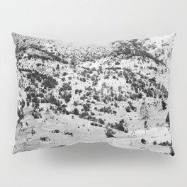 Santa Cruz County, Arizona. 1909 Pillow Sham