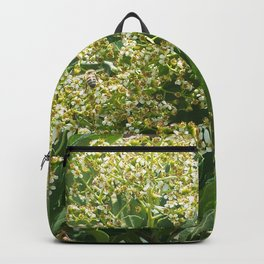 Flowers And Bees Backpack