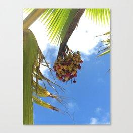 Puerto Rico Condado beach fruit Canvas Print