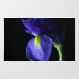 Moody Iris Rug