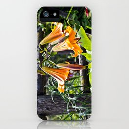 Orange Meadow Lillies iPhone Case