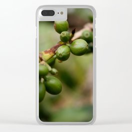 Coffee Beans of Ethiopia Clear iPhone Case