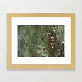 [barcelona] - ... the golden face Framed Art Print