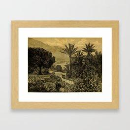 The Gardeners' Chronicle 1874 Framed Art Print