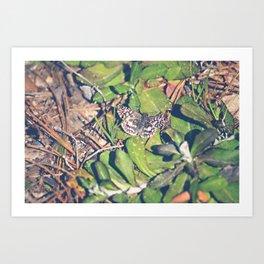 Fly Away-color Art Print