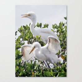Learn To Fly Canvas Print