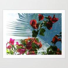 Palmvilla Art Print
