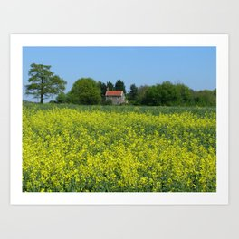 Golden Yellow Art Print