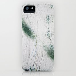 Two Feathers iPhone Case