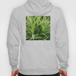 Exotic Lush Green Leaves Hoody