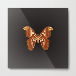 Atlas Moth (Attacus Atlas) Metal Print