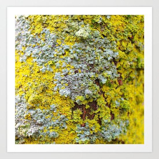 Moss! Art Print