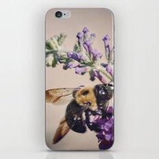 Bee-autiful iPhone & iPod Skin