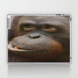Orangutan Face Laptop & iPad Skin