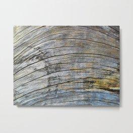 Jersey Wind I Metal Print