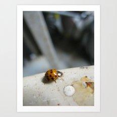 ladybug 3 Art Print