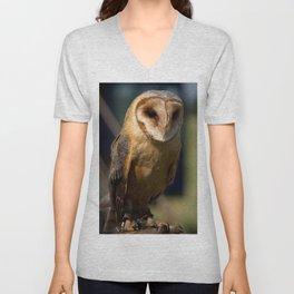 Dusk Dark Breasted Barn Owl Unisex V-Neck