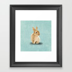 Portrait of a little bunny Framed Art Print
