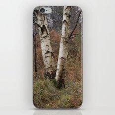 invierno iPhone & iPod Skin