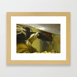 I See You... Framed Art Print