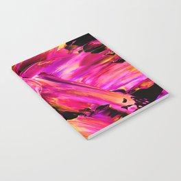 Explode Notebook