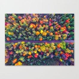 The Autumn Forest (Color) Canvas Print