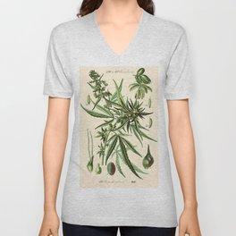 Cannabis Sativa - Vintage botanical illustration Unisex V-Neck