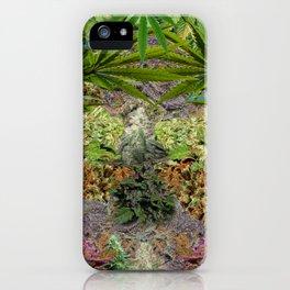 Marihuanaaas iPhone Case