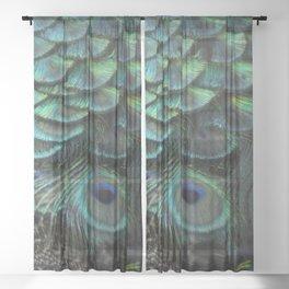 Peacock Bird Feathers Plumage Texture 1 Sheer Curtain