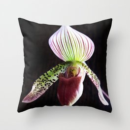 Side To The Wall Throw Pillow