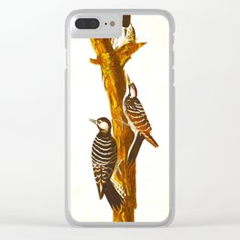 Red-cockaded Woodpecker Clear iPhone Case