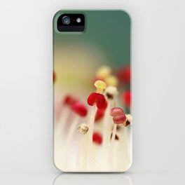 Flower Candy iPhone Case