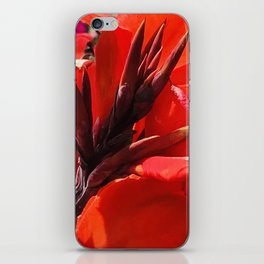 Red Tropical Flowers from the Hawaiian Islands iPhone Skin