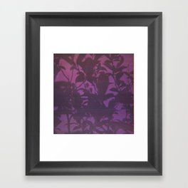 Daybreak Framed Art Print