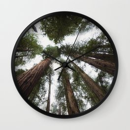 Redwood Portal - nature photography Wall Clock