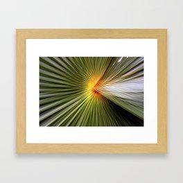 Palm leaf zoom Framed Art Print