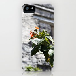 Touch of color in Tulum iPhone Case
