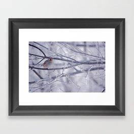 Winter friend 3. Framed Art Print
