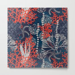 Corals and Starfish Metal Print