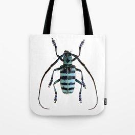 Anoplophora Graafi Beetle Tote Bag