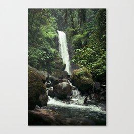 Lush Jungle Waterfall Looks Like Jurassic Park Canvas Print